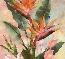 Bird of Paradise with Anthurium by Lily Nakao