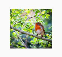 Robin on Branch Unisex T-Shirt