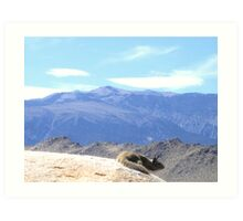 At The Top Of The World Art Print