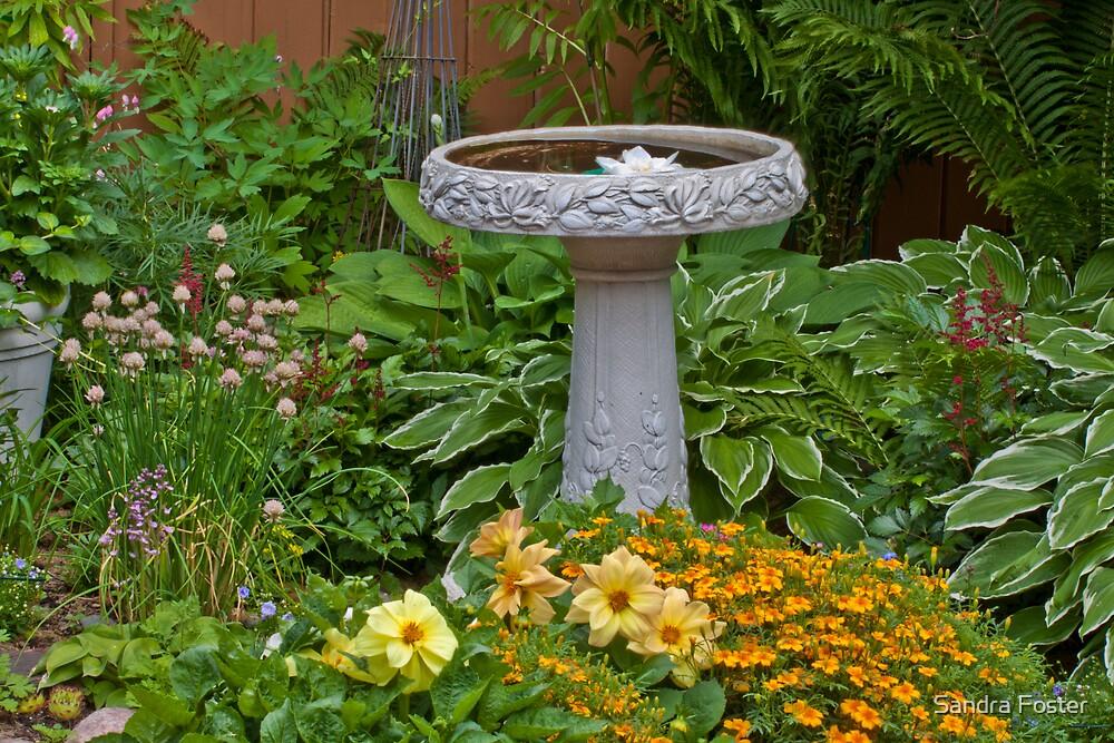 Bird Bath Garden Scene  by Sandra Foster