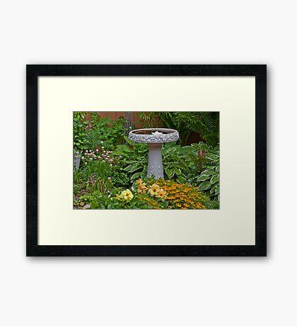 Bird Bath Garden Scene  Framed Print