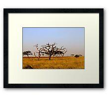 Plains of Africa Framed Print