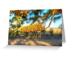Grevillea flower of silky oak, Greeting Card