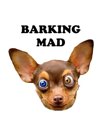 Barking mad by Elliott Butler