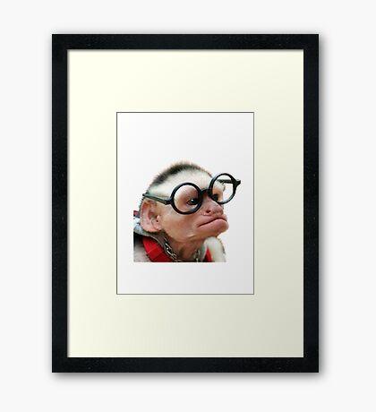 Funny Monkey Framed Print