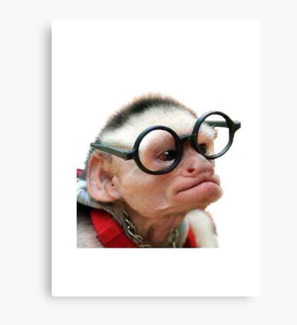 Funny Monkey Canvas Print