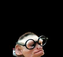 Funny Monkey by Elliott Butler