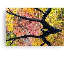 Sunken Log and Autumn Reflection Canvas Print