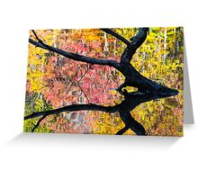 Sunken Log and Autumn Reflection Greeting Card