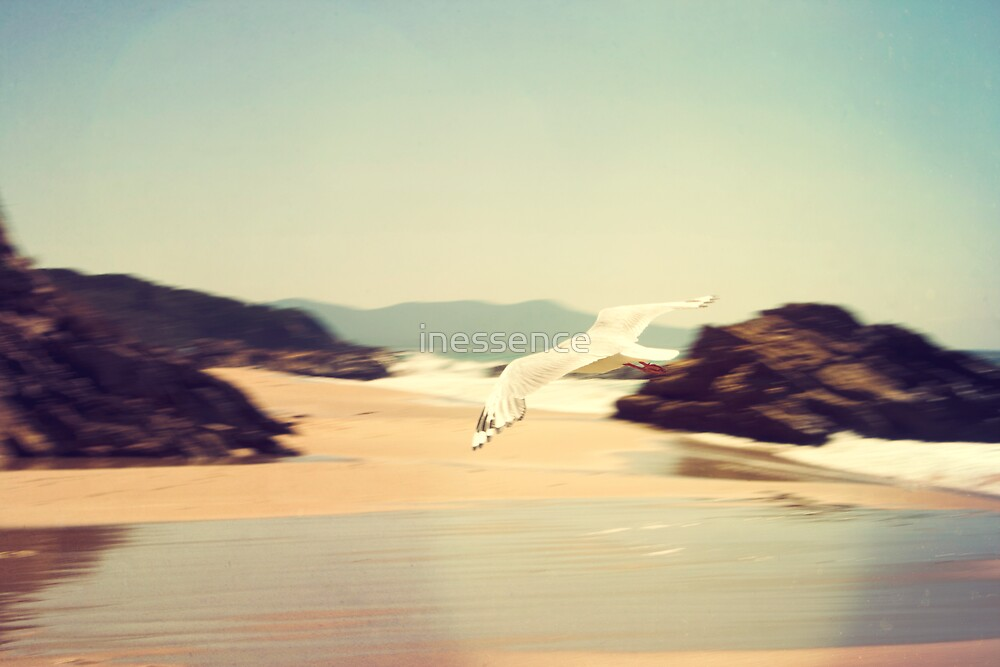 . endless summer . by inessence