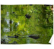 Green stream Poster