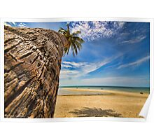 Palm tree in Koh Samui #2 Poster