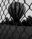 Fenced In (black and white) by Nevermind the Camera Photography