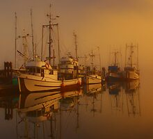 Misty Moorings II by Wendi Donaldson