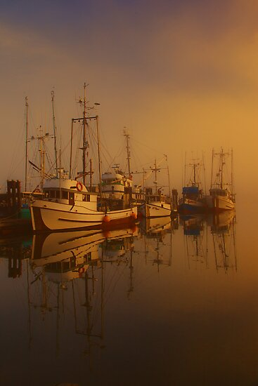 Misty Moorings II by Wendi Donaldson Laird