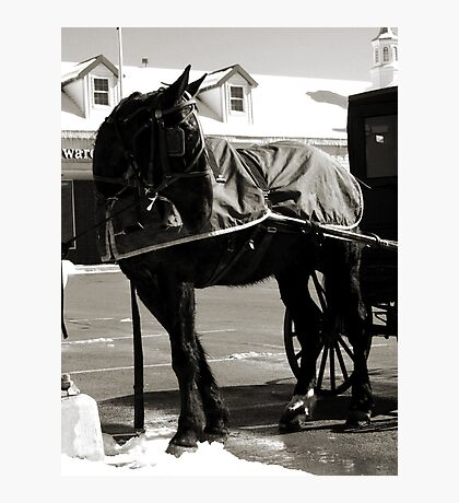 Don't Forget to Park Your Horse (black and white) Photographic Print