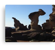 Natural sculpture Canvas Print