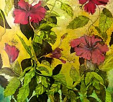 Hibiscus Cycle by Jet James