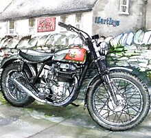 BSA GOLDSTAR TRIALS MOTORCYCLE by JohnLowerson