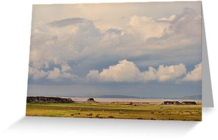 Morecambe Bay by Colin Metcalf