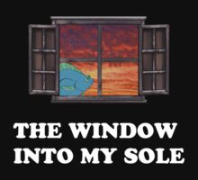 The window into my sole by Elliott Butler