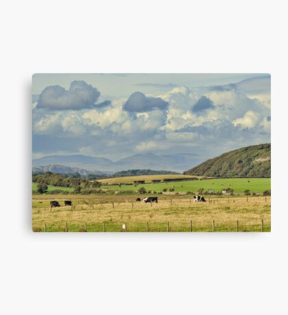 Rural Landscape Canvas Print