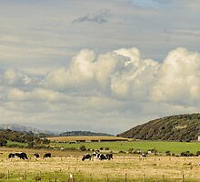 Rural Landscape Panorama, by Colin Metcalf