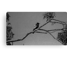 Nothing to crow about in b/w Canvas Print