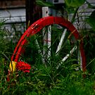 Red Wagon Wheel by amanda reed