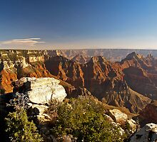 The Grand Canyon from the North Rim by Alex Cassels
