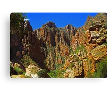 Swartberg Pass - South Africa Canvas Print