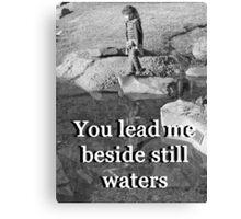 """You lead me beside still waters"" by Carter L. Shepard Canvas Print"