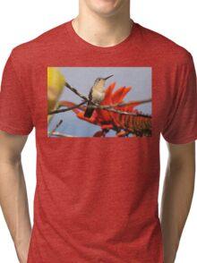 Buffy Hummingbird 2 Tri-blend T-Shirt