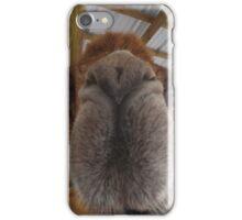 Chewie kiss iPhone Case/Skin