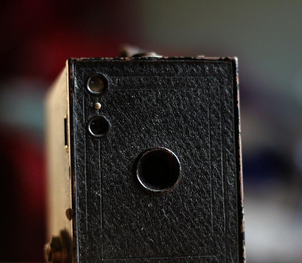 Brownie (8) by Mandy Kerr