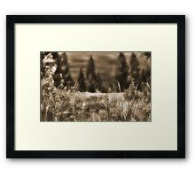Dreaming on the Mountain Top Framed Print