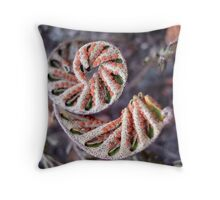 NATURAL FRACTAL Throw Pillow