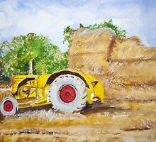 Down on the farm by Carole Robins