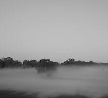 mist by GrAPE