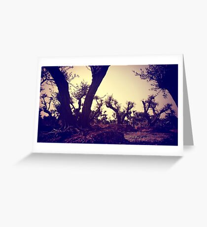 spring collection Greeting Card