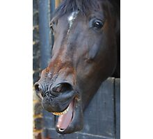 'Ya Horse-Faced Goon' Photographic Print