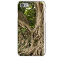 Old tree  iphone 4 4s, iPhone 3Gs, iPod Touch 4g case iPhone Case/Skin