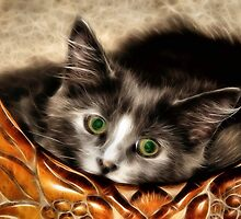 Green Eyes by SuddenJim