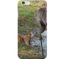 Crane Nursery- Waterfowl Yard iPhone Case/Skin