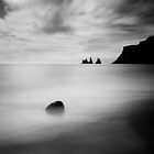 Iceland: Vik by Nina Papiorek