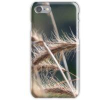 Late Summer Grass iPhone Case/Skin