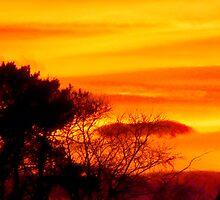 Scottish Sunset by dgscotland
