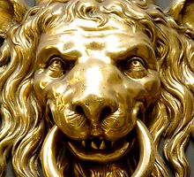 Lions Head Door Knocker by traveling9to5