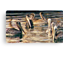 Pelicans of love Canvas Print