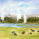 Yellowstone National Park by Diane Hall